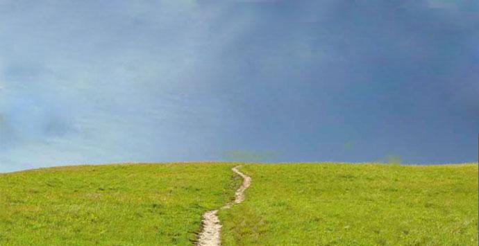 path-forward-main